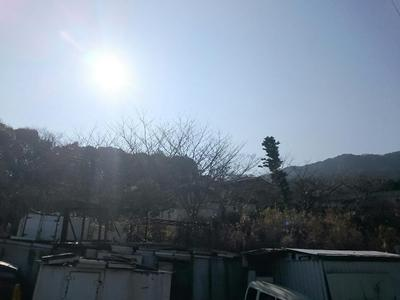 DSC_0222_1.JPG